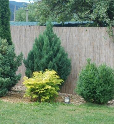 Záhrada rodinného domu 9